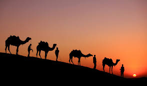 Tempo traveller for Rajasthan Tour
